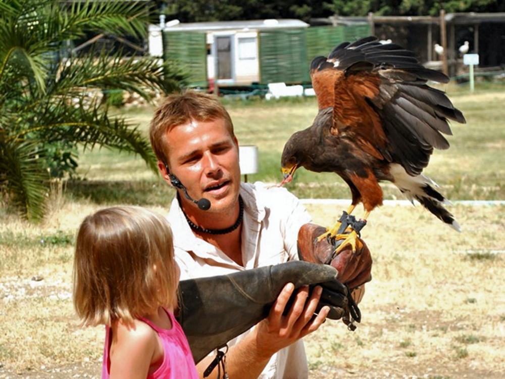 Aigles de Valmy, fauconnier et enfant
