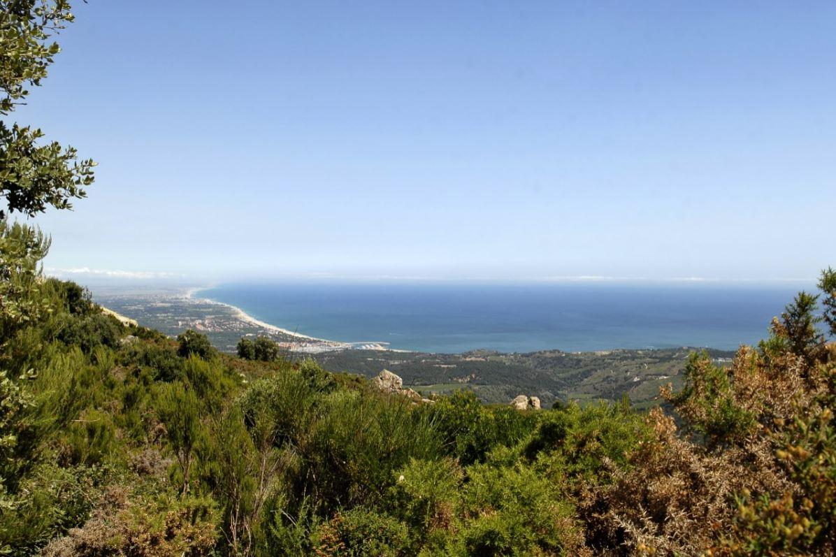 Massif des Albères à Argelès-sur-Mer