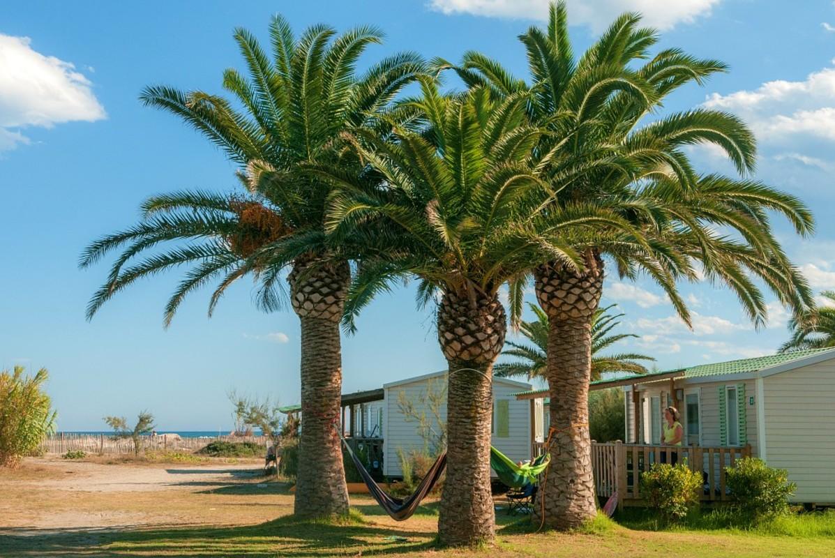 Plage du camping Marina d'Aléria et mobil-homes