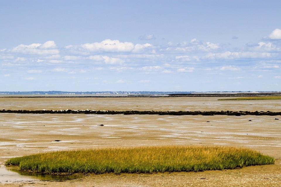 Passage du Gois à marée basse